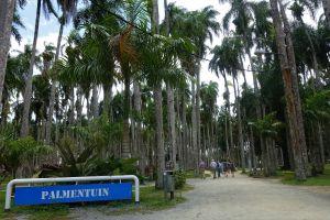 Dag1.Paramaribo.1