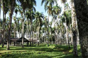 Dag1.Paramaribo.13
