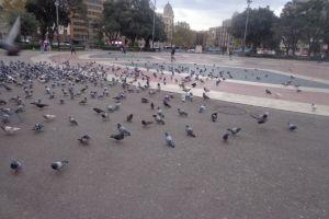 Het is druk op het plein