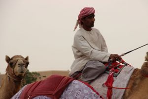Bij de kamelenrace
