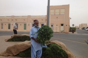 Agrarische markt Abu Dhabi